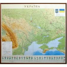 Рельєфна карта України (в дерев'яній рамі)