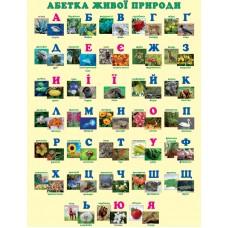 Абетка живої природи. Навчальний плакат для початкової школи (на планках)