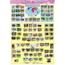 Жива природа землі. Тварини. Навчальний плакат для початкової школи (на планках)